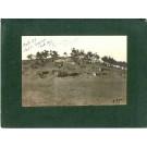 Photographie Ancienne Guerre Côte 181