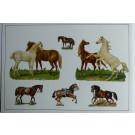 Images chromos gaufrés découpés chevaux équitation 1890
