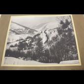Photographie guerre front des Vosges artillerie en montagne