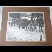 Photographie guerre 1914-18 Ravitaillement par mulets